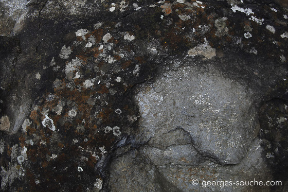 Basalte et lichens