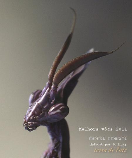 vots-empusa