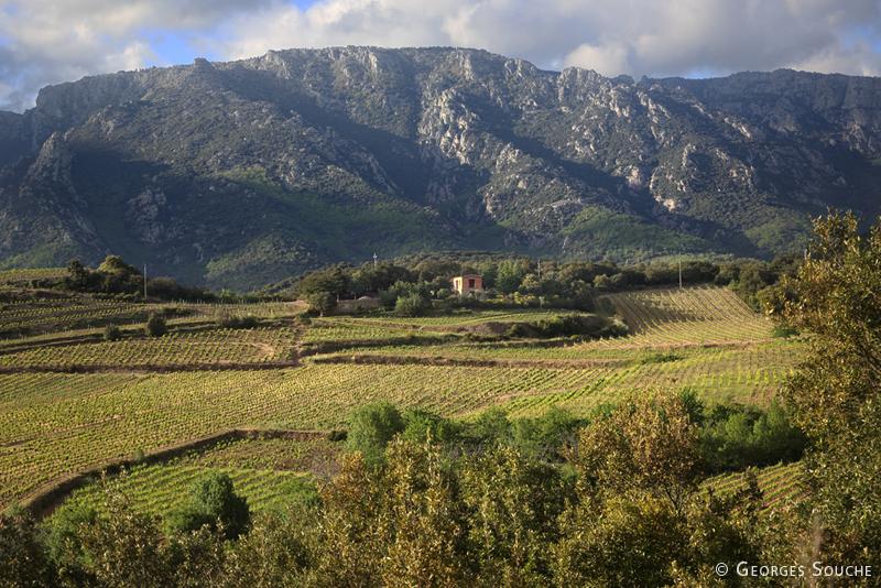 Parc Naturel du Haut-Languedoc