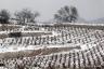 Escalette, hiver #1, Terrasses du Larzac