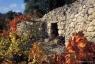 Escalette, automne #5, Terrasses du Larzac