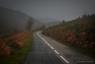 Route de l'Espinouse, un jour d'automne pluvieux