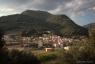 Ceps, vallée de l'Orb, Parc Naturel du Haut-Languedoc