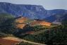Vignoble de Berlou, Parc Naturel du Haut-Languedoc