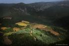 Minervois (au-dessus de Félines)