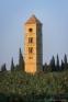 Tour romane de Puissalicon (34)