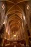 Cathédrale Saint-Fulcran, Lodève (34)