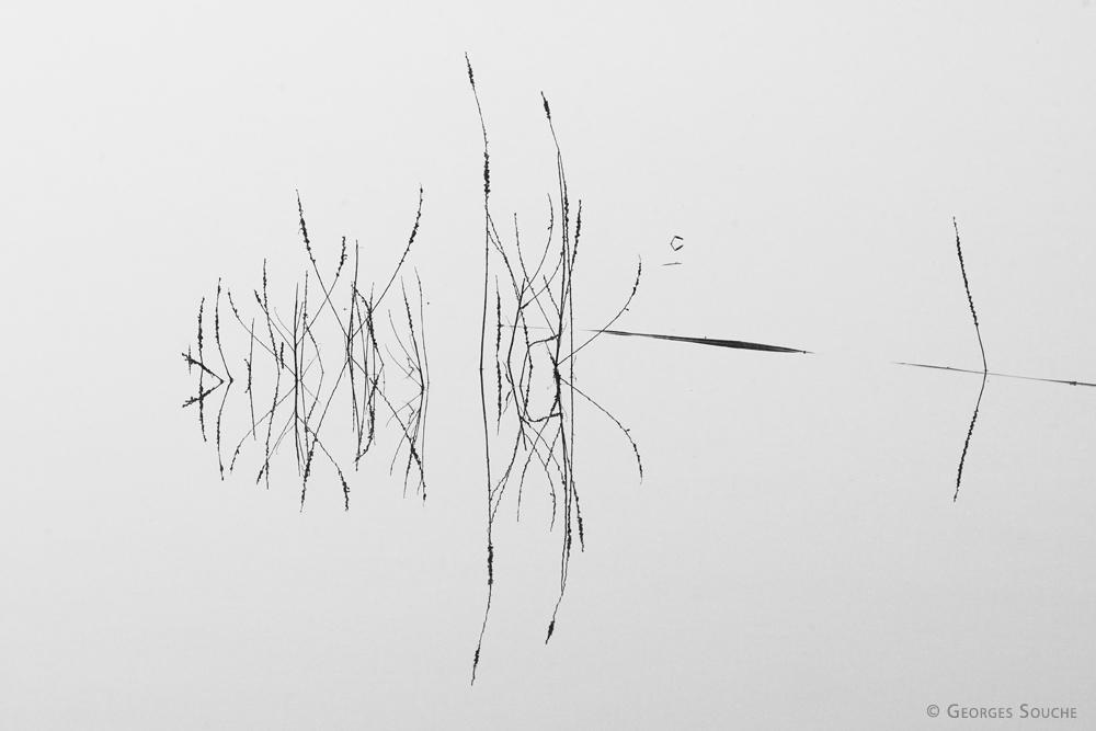 Lac du Salagou 2013