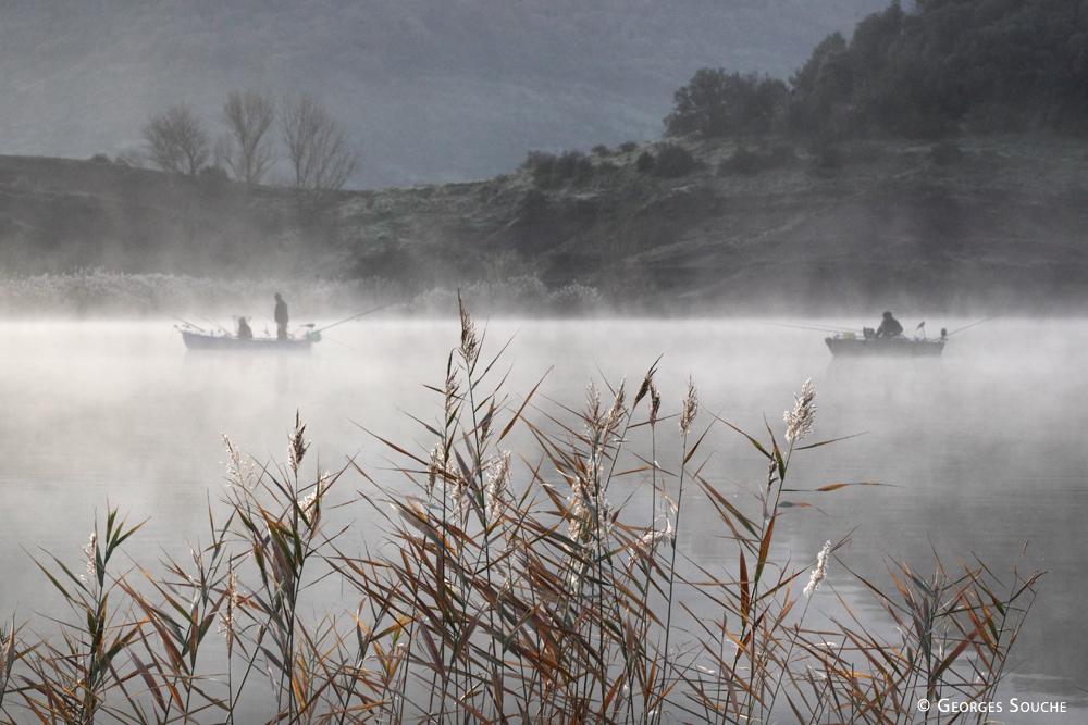 Lac du Salagou, 2011
