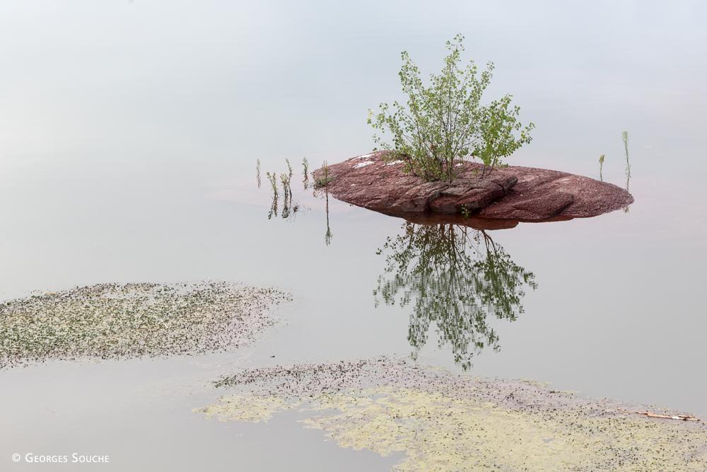 Lac du Salagou, 2014