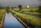 Canal entre Aniane et Saint-Jean de Fos