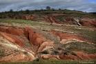 Ruffes en vallée du Salagou