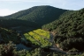 Hautes Corbières, 1997