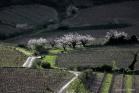Saint-Chinian / Vieussan, vallée de l'Orb (1604072023)