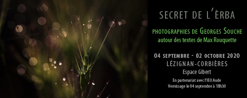 exposition Secret de l'herbe