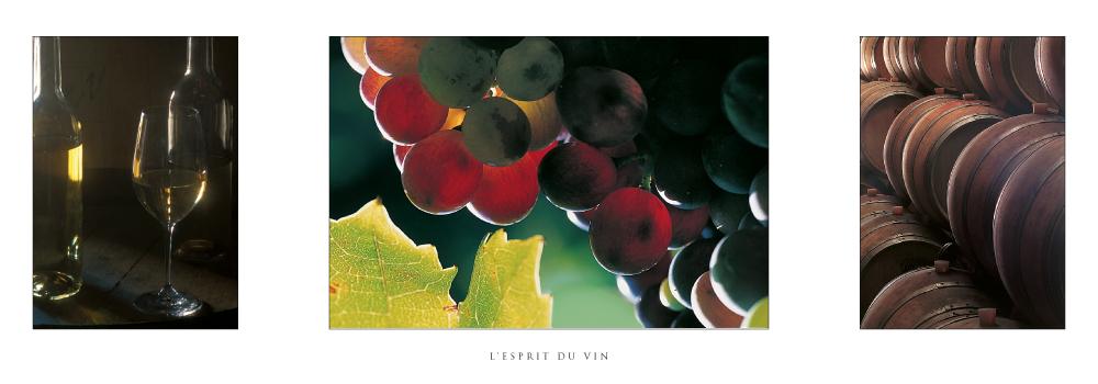 Réf : F.08 - L'esprit du vin - Carte en triptyque