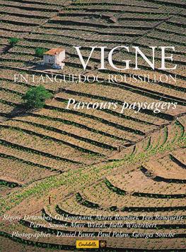 Vigne en Languedoc-Roussillon