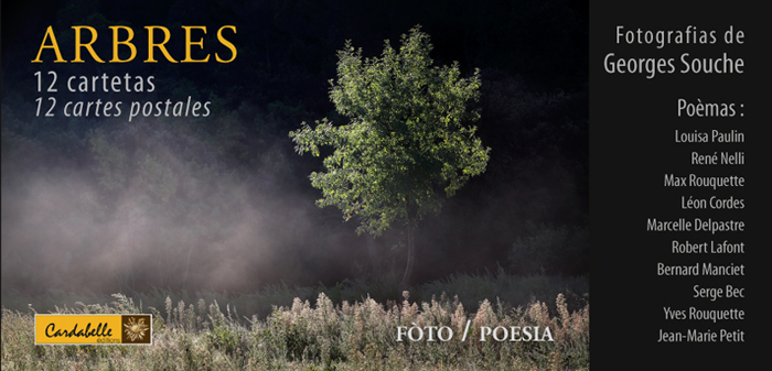 couv_arbres_700