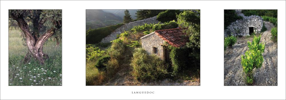 Réf. : L.71 - Languedoc - Carte en triptyque