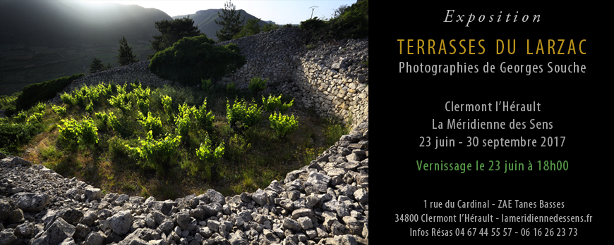Exposition Terrasses du Larzac