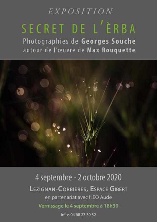 affiche-SDE-lezignan-web-500